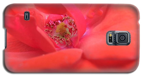 Galaxy S5 Case featuring the photograph Scent Of Pleasure by Agnieszka Ledwon