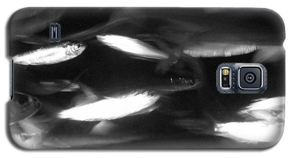 School Galaxy S5 Case by Barbara Bardzik