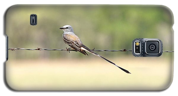 Scissor-tailed Flycatcher Galaxy S5 Case
