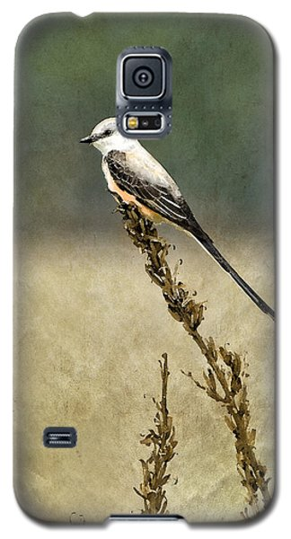 Scissortailed-flycatcher Galaxy S5 Case by Betty LaRue