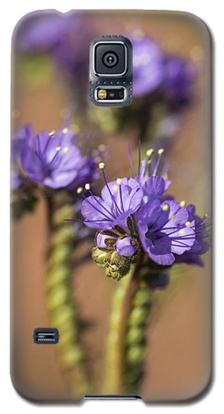 Scorpion Weed Galaxy S5 Case