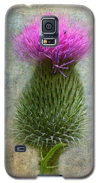 Scotch Thistle Galaxy S5 Case