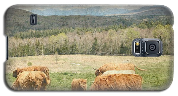 Scottish Highland Grazing  Galaxy S5 Case