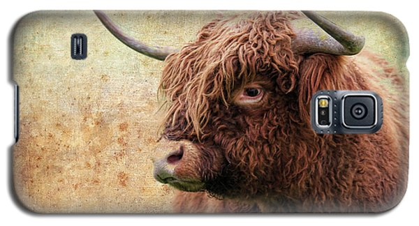 Scottish Highland Steer Galaxy S5 Case by Steve McKinzie