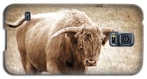 Galaxy S5 Case featuring the photograph Scottish Highlander Bull by Karen Shackles
