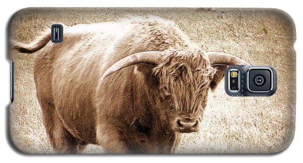 Scottish Highlander Bull Galaxy S5 Case by Karen Shackles