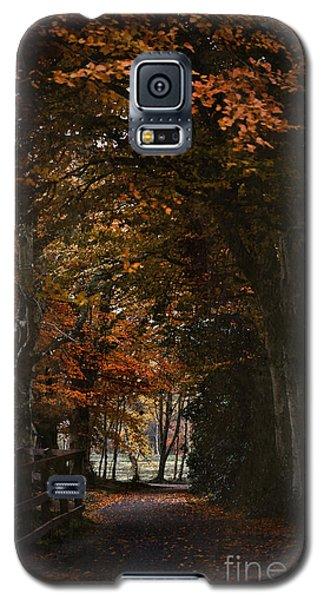 Scottish Woodland Walk Galaxy S5 Case by Liz  Alderdice
