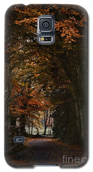 Galaxy S5 Case featuring the photograph Scottish Woodland Walk by Liz  Alderdice