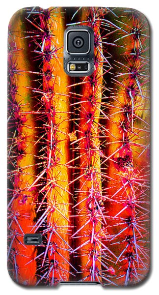 Scottsdale Saguaro Galaxy S5 Case
