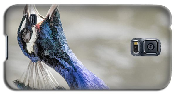 Screaming Peacock Galaxy S5 Case