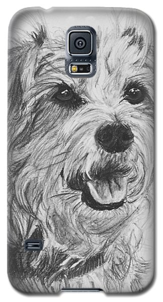 Scruffy Terrier Dog Drawing Galaxy S5 Case