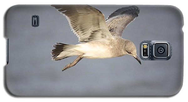 Sea Bird Galaxy S5 Case