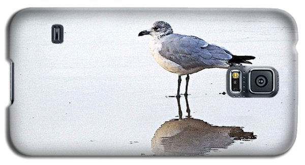 Galaxy S5 Case featuring the photograph Sea Birds No.1 by Melissa Sherbon