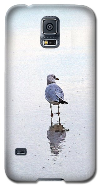 Galaxy S5 Case featuring the photograph Sea Birds No.3 by Melissa Sherbon