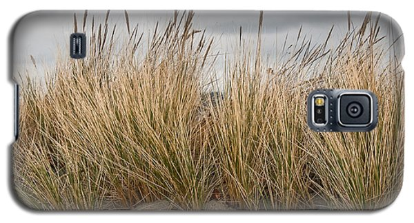 Sea Grass And Sand Galaxy S5 Case