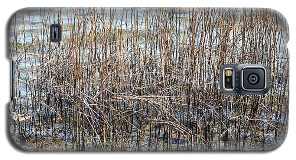 Galaxy S5 Case featuring the photograph Sea Grass by Judy Palkimas