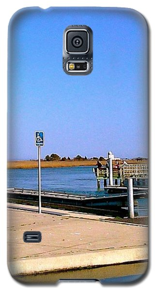 Sea Gulls Watching Over The Wetlands Galaxy S5 Case by Amazing Photographs AKA Christian Wilson