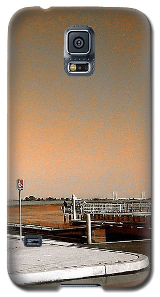 Sea Gulls Watching Over The Wetlands In Orange Galaxy S5 Case by Amazing Photographs AKA Christian Wilson