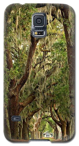 Sea Island Oaks Portrait Galaxy S5 Case