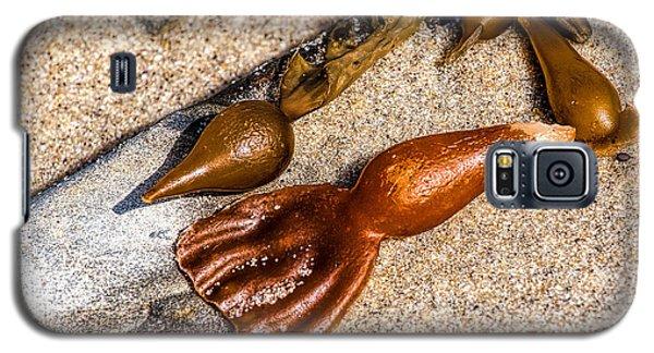 Sea Jewels Galaxy S5 Case