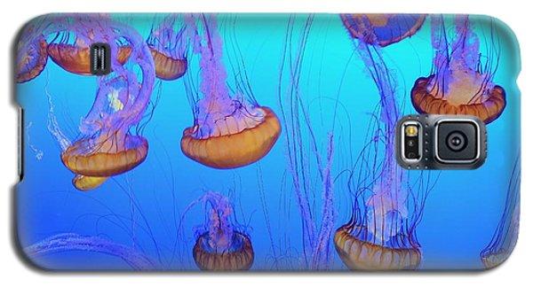 Sea-nettle Jelly Fish  Galaxy S5 Case