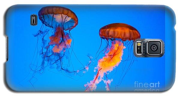 Sea Nettles Galaxy S5 Case