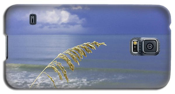 Sea Oats Ahead Of The Storm Galaxy S5 Case