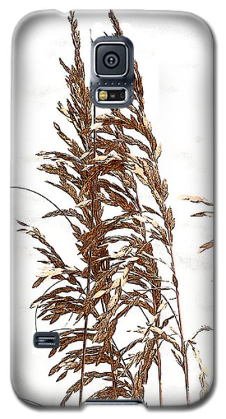 Sea Oats Galaxy S5 Case