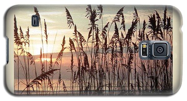 Fabulous Blue Sea Oats Sunrise Galaxy S5 Case