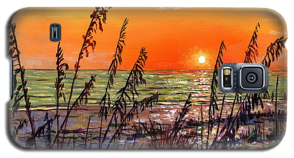 Sea Oats Sunset Galaxy S5 Case