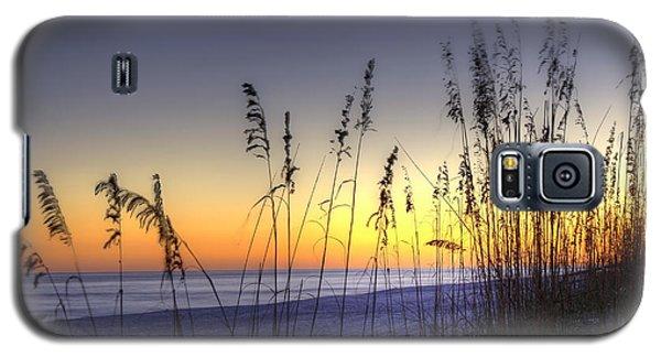 Sea Oats Galaxy S5 Case