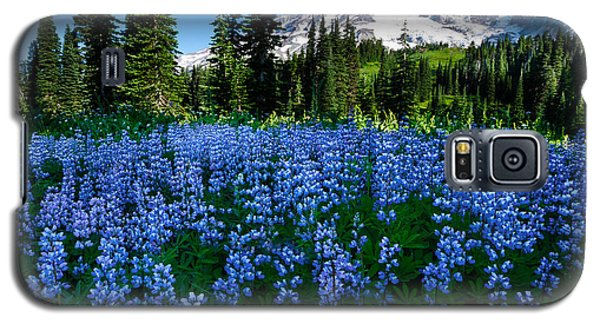 Sea Of Blue Galaxy S5 Case