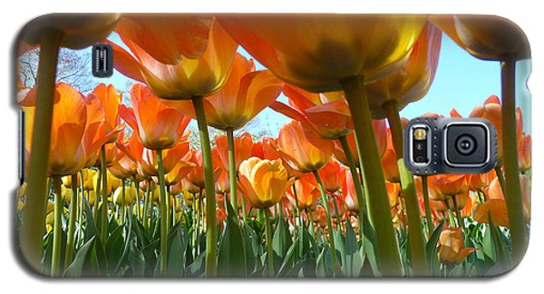 Galaxy S5 Case featuring the photograph Sea Of Orange by Dan Myers