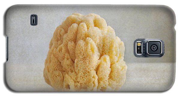Galaxy S5 Case featuring the photograph Sea Sponge by Aiolos Greek Collections