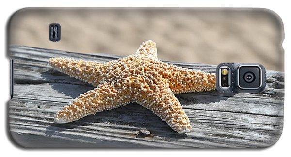 Sea Star On Railing Galaxy S5 Case