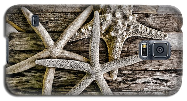 Sea Stars Galaxy S5 Case by Colleen Kammerer
