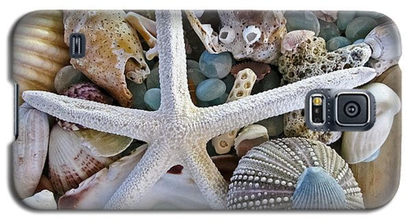 Sea Treasure Galaxy S5 Case by Colleen Kammerer