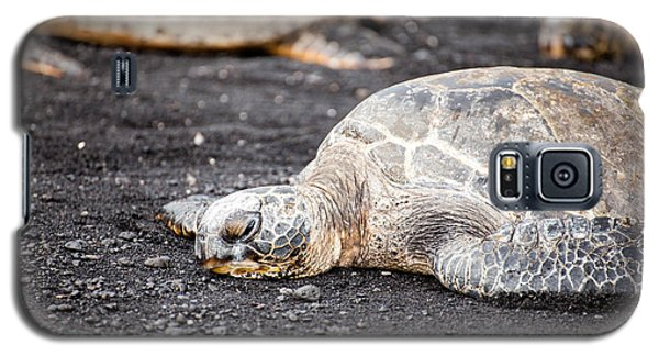 Galaxy S5 Case featuring the photograph Sea Turtle On Black Sand by Ed Cilley