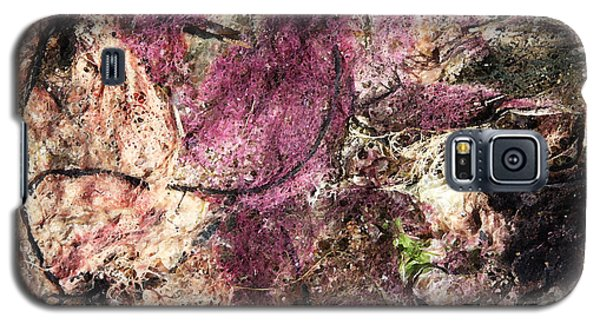 Galaxy S5 Case featuring the photograph Sea Weed by Brooke T Ryan