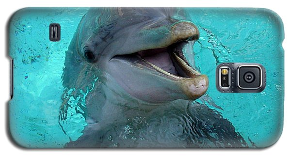 Galaxy S5 Case featuring the photograph Sea World Dolphin by David Nicholls