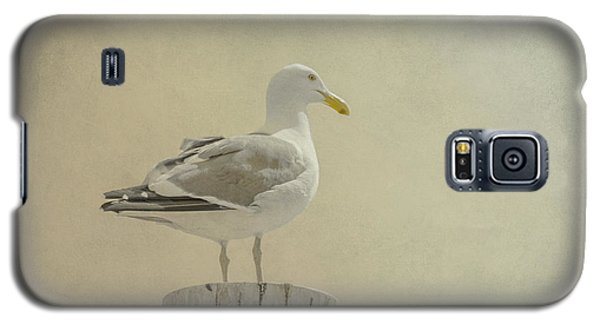 Seabird Galaxy S5 Case