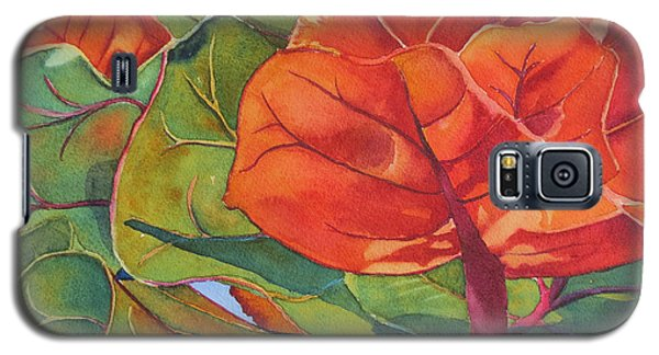 Seagrape Leaves Galaxy S5 Case by Judy Mercer