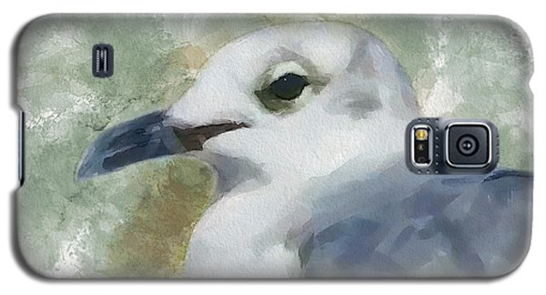 Seagull Closeup Galaxy S5 Case by Greg Collins