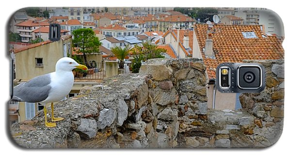 Seagull In Cannes Old City Galaxy S5 Case