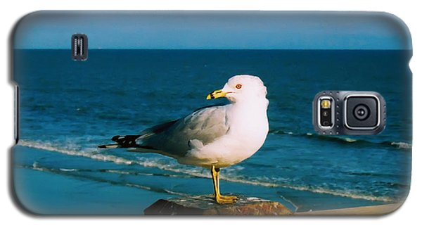 Galaxy S5 Case featuring the digital art Seagull by Kara  Stewart