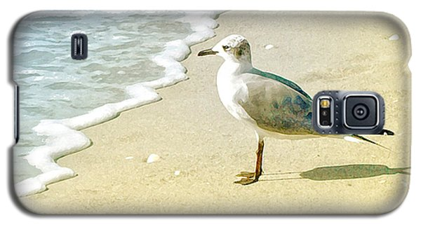 Galaxy S5 Case featuring the photograph Seagull by Karen Lynch