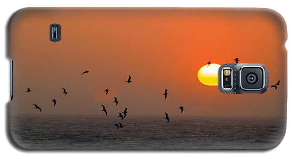 Galaxy S5 Case featuring the photograph Seagull On Sunset by William Havle