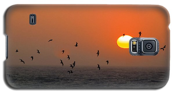 Seagull On Sunset Galaxy S5 Case by William Havle
