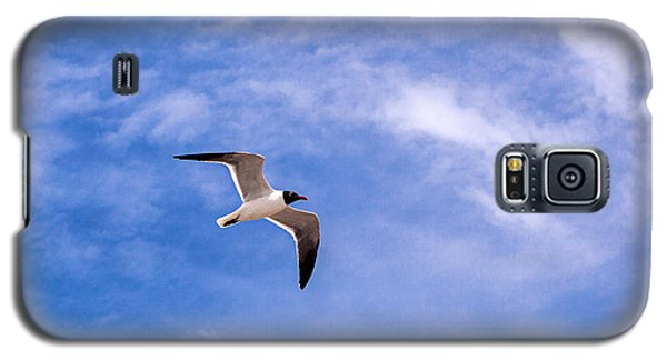 Galaxy S5 Case featuring the photograph Seagull by Sennie Pierson