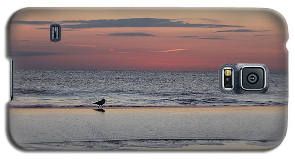 Galaxy S5 Case featuring the photograph Seagull Strolls The Seashore by Robert Banach